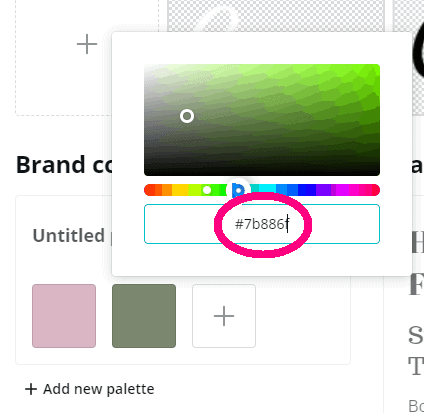 screen shot of canva.com brand kit page step 4.3 of canva color codes