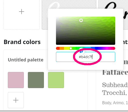 screen shot of canva.com brand kit page step 4.4 of canva color codes