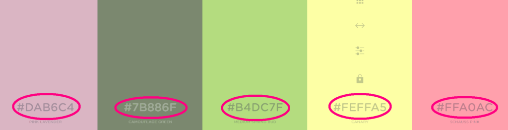 screen shot of 5 different HEX colors from Coolors.co step 4.1 of canva color codes