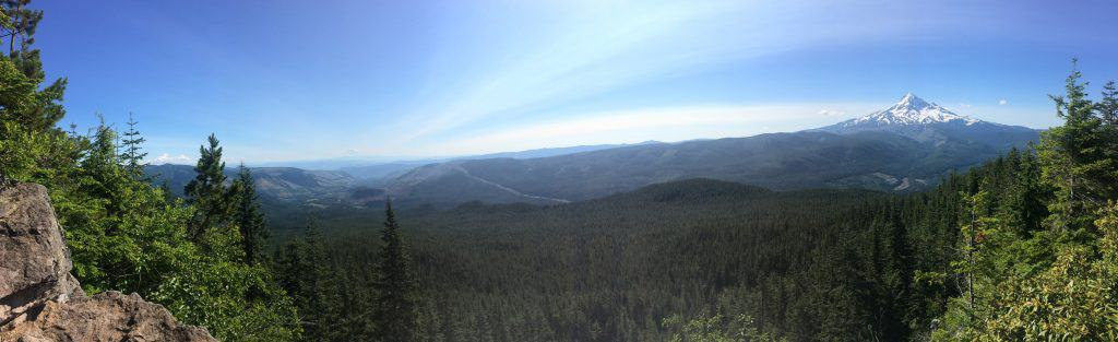 panoramic photo of mt hood and mt hood mational forest